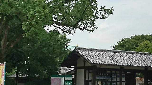 20170818 (30)