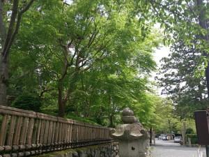 高野山金剛峯寺まで02