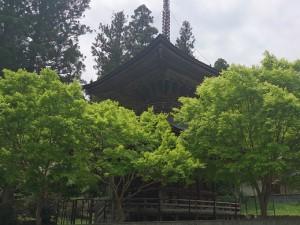高野山金剛峯寺まで01